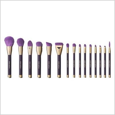 Sonia Kashuk 15-Piece Brush Set (Target, $40)