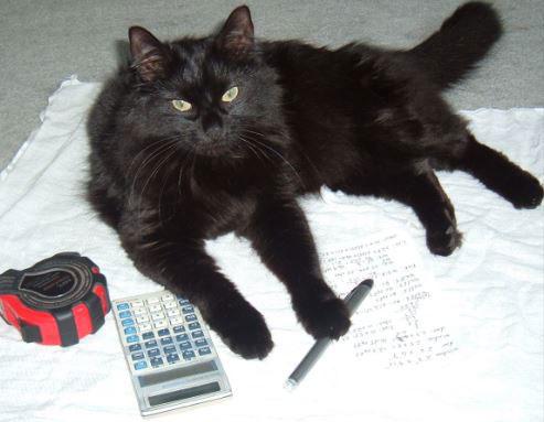 black cat sputnik