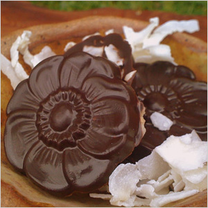Chocolate and toasted coconut candies