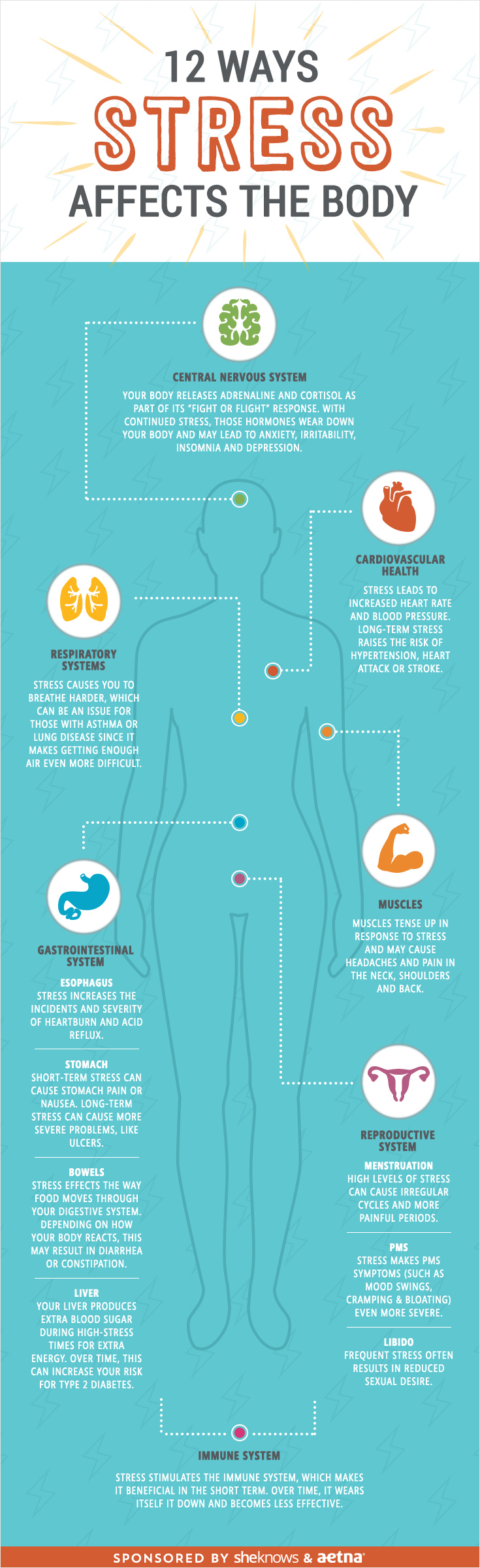 how-stress-effects-the-body-infographic