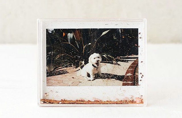 Clear photo frame with gold glitter and a picture of a dog