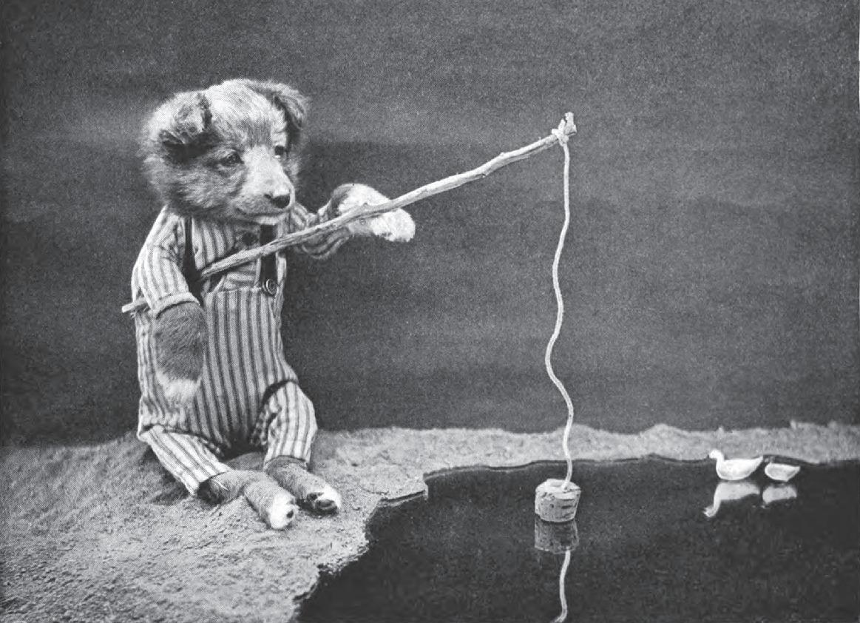 dog fishin