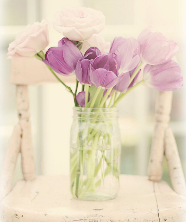 Tulips and roses in mason jar