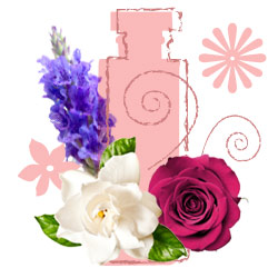 Floral perfume scent