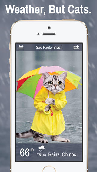 Weather Whiskers Cat App