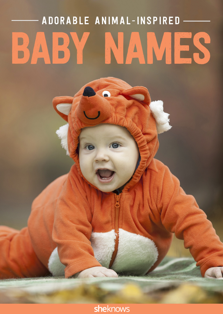 wild animal baby names