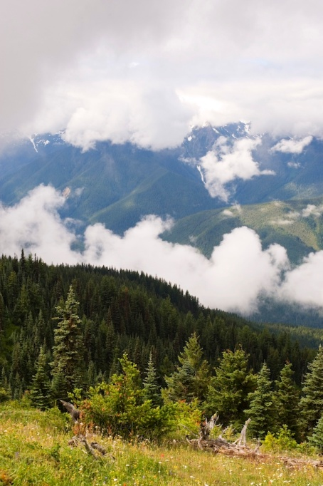 Best Kid-Friendly Hikes in the U.S. — Washington: Olympic National Park