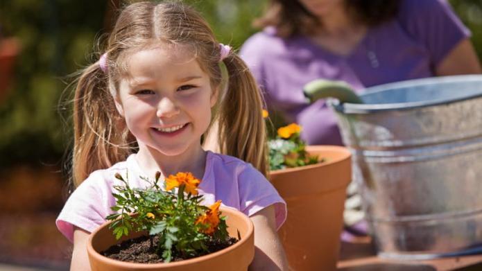 Kids' Summer Garden