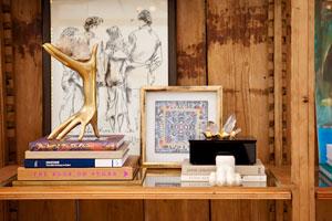Abbe Fenimore themed bookshelf