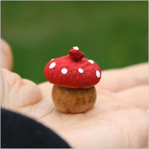 Acorn toadstools craft | Sheknows.com