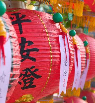 Chinese New Year: The year of
