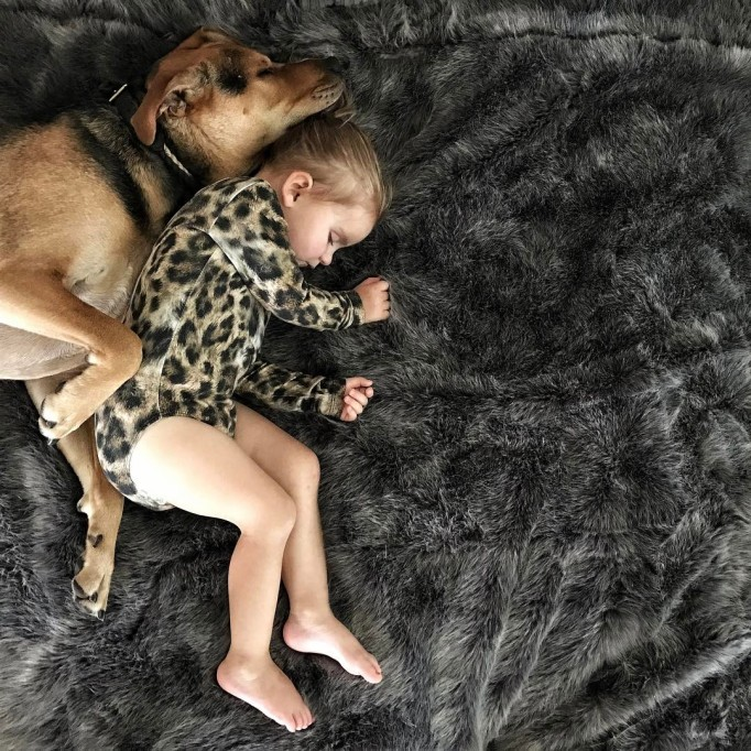 Dog and baby napping together