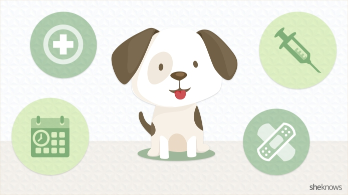 Keep your puppy healthy with this