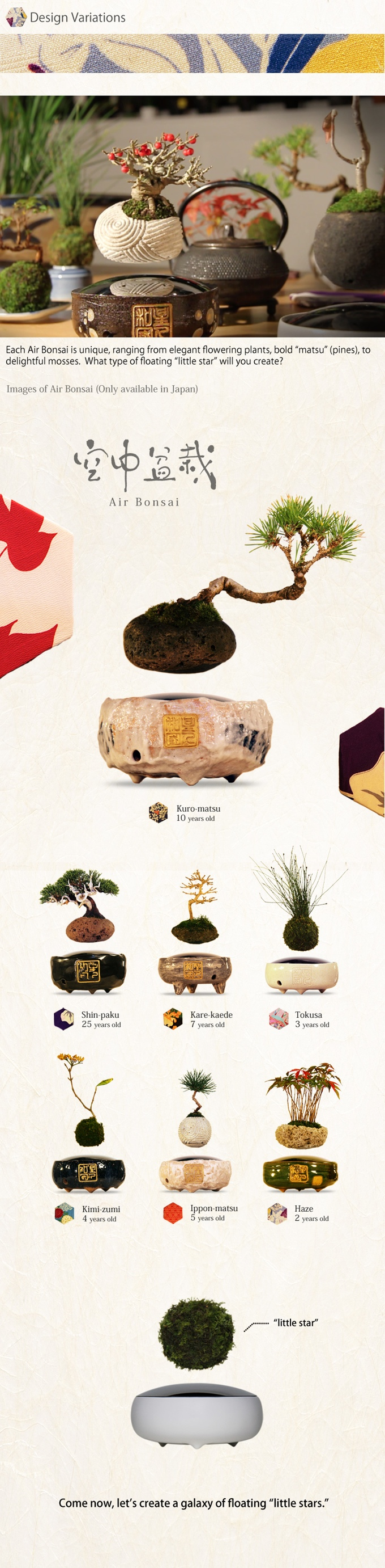 Air Bonsai is one of the most magical creations we've ever seen