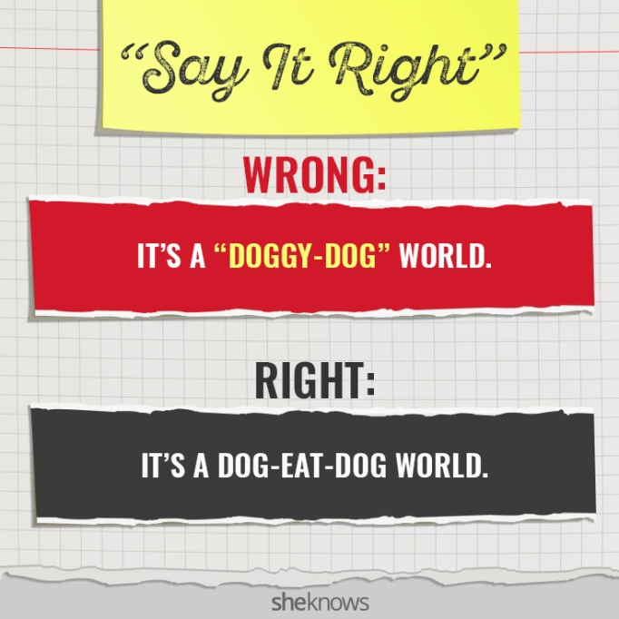 Commonly Mispronounced Phrases: 'It's a 'doggy-dog' world'