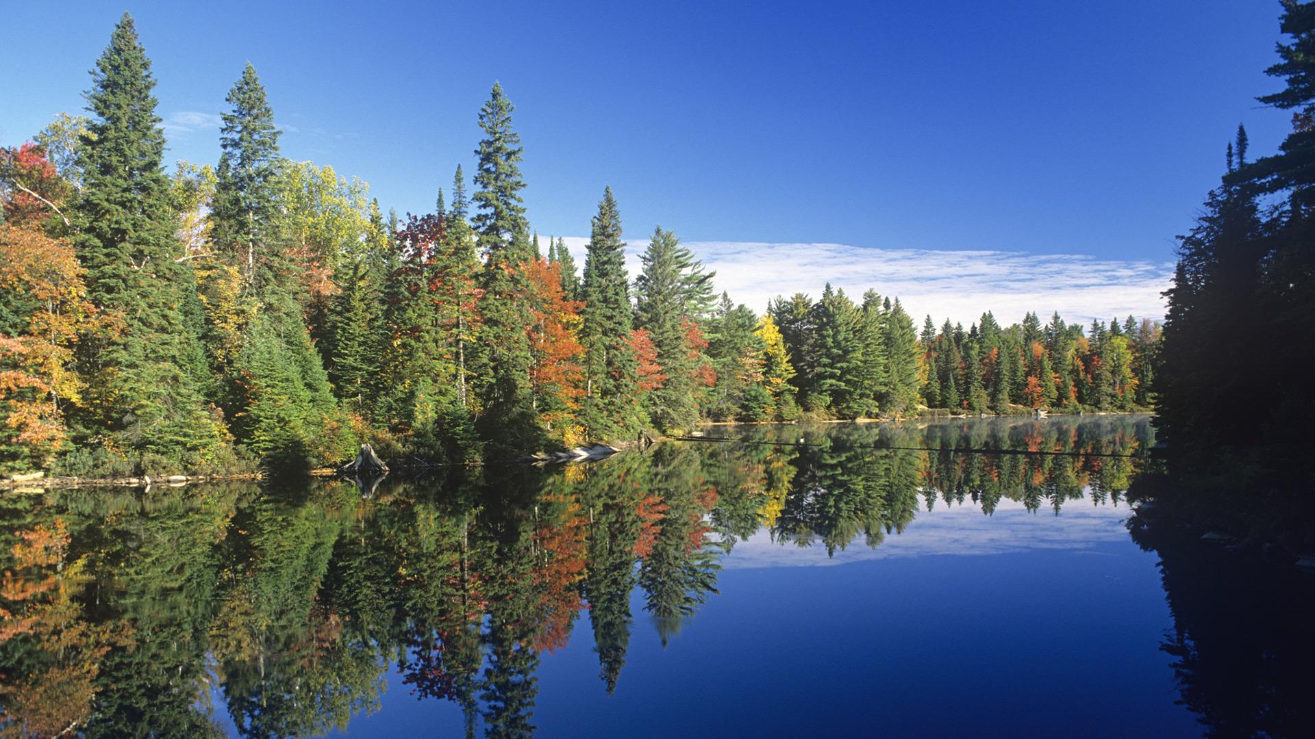Algonquin Park, Ontario | Sheknows.ca
