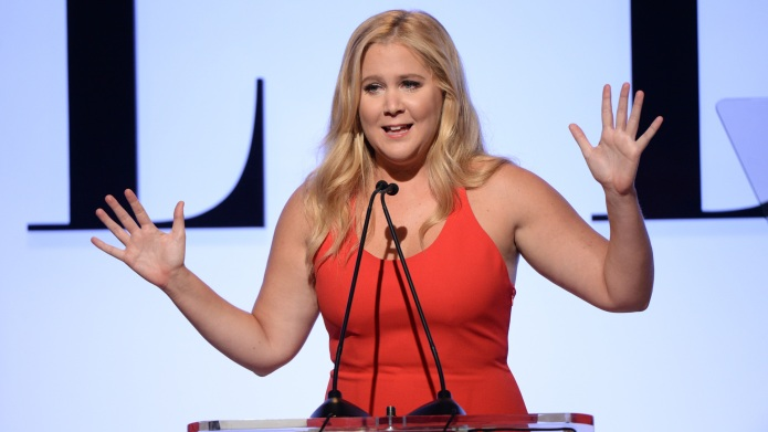 5 Reasons Amy Schumer would be