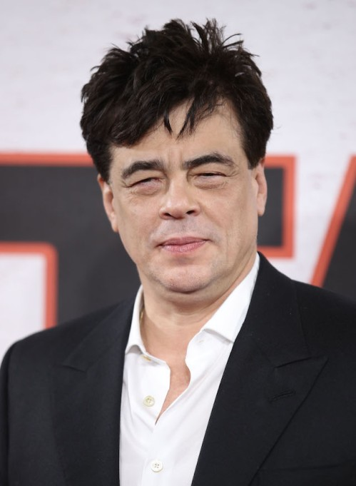 Movie Stars Who Aren't Above Doing TV: Benicio Del Toro