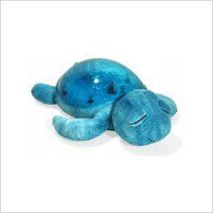 Tranquil turtle | Sheknows.ca