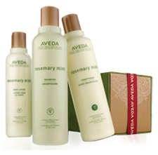 Aveda The Gift of Refreshment