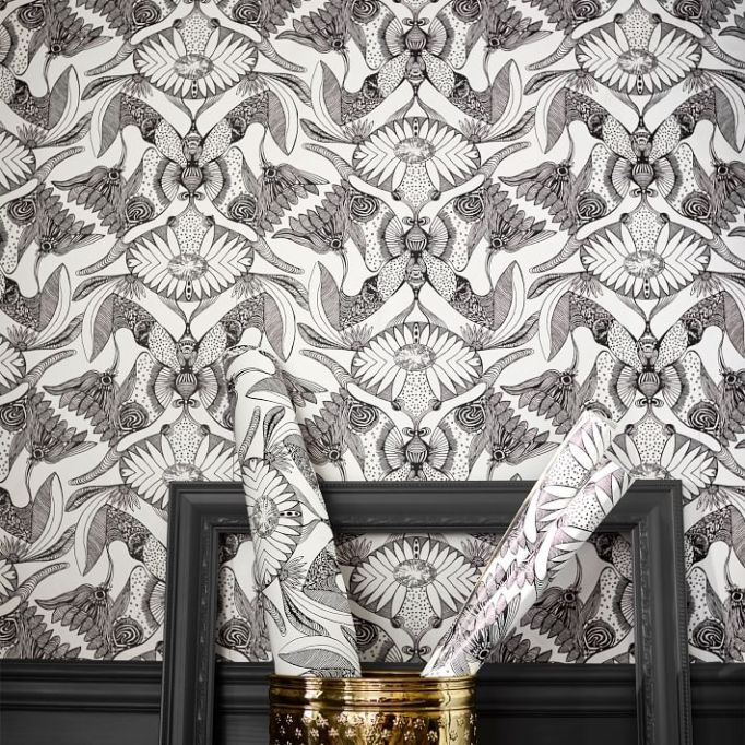 Anna Sui for PBteen: Add drama to any room with this wallpaper