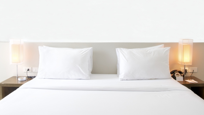 Don't let the bed bugs bite: