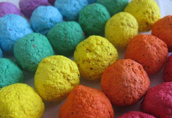 What are seed bombs?