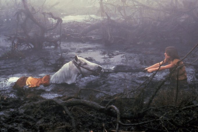 15 Movies About Animals That Always Make Us Cry: The NeverEnding Story