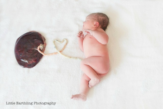 Baby with placenta photo shoot