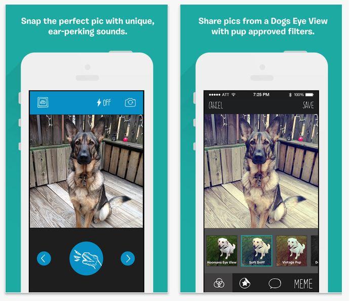 BarkCam app