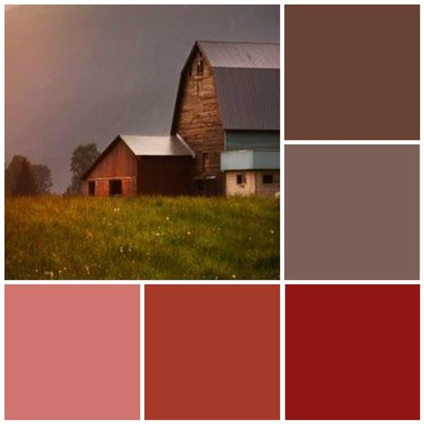 Barnyard bliss color scheme