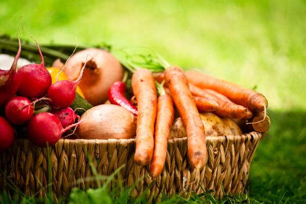 Basket of autumn veggies