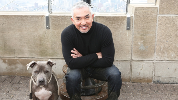 Cesar Millan Gives Us Some of
