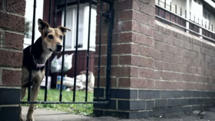 Benefits Street is back but it