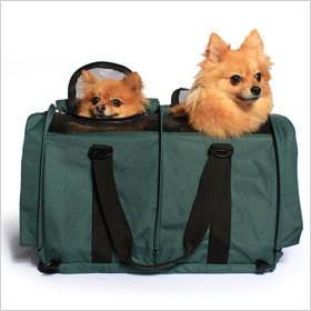 Sturdibag's Divided pet carrier