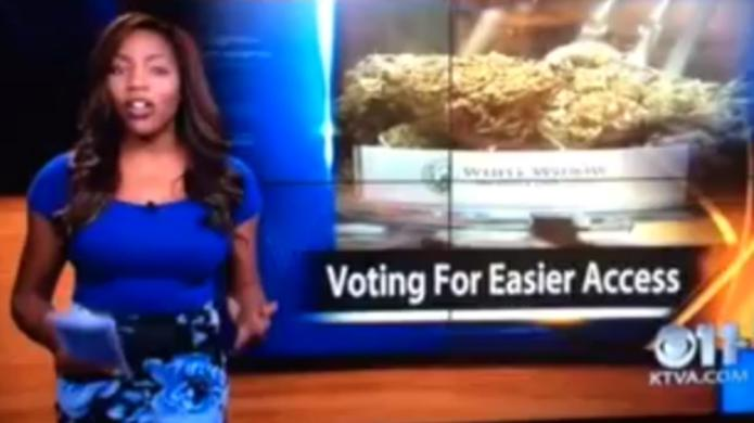 Reporter resigns on-air for pot business: