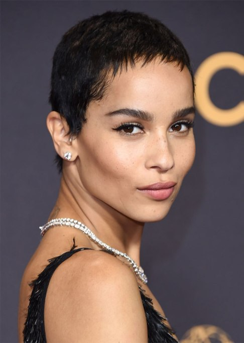 Best Natural Hair Red Carpet Moments of 2017 | Zoe Kravitz