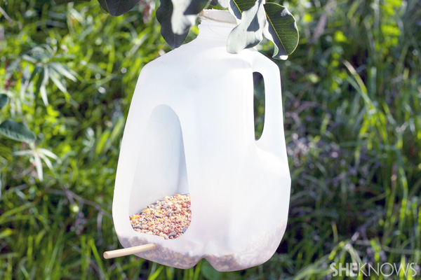 Milk bottle bird feeders