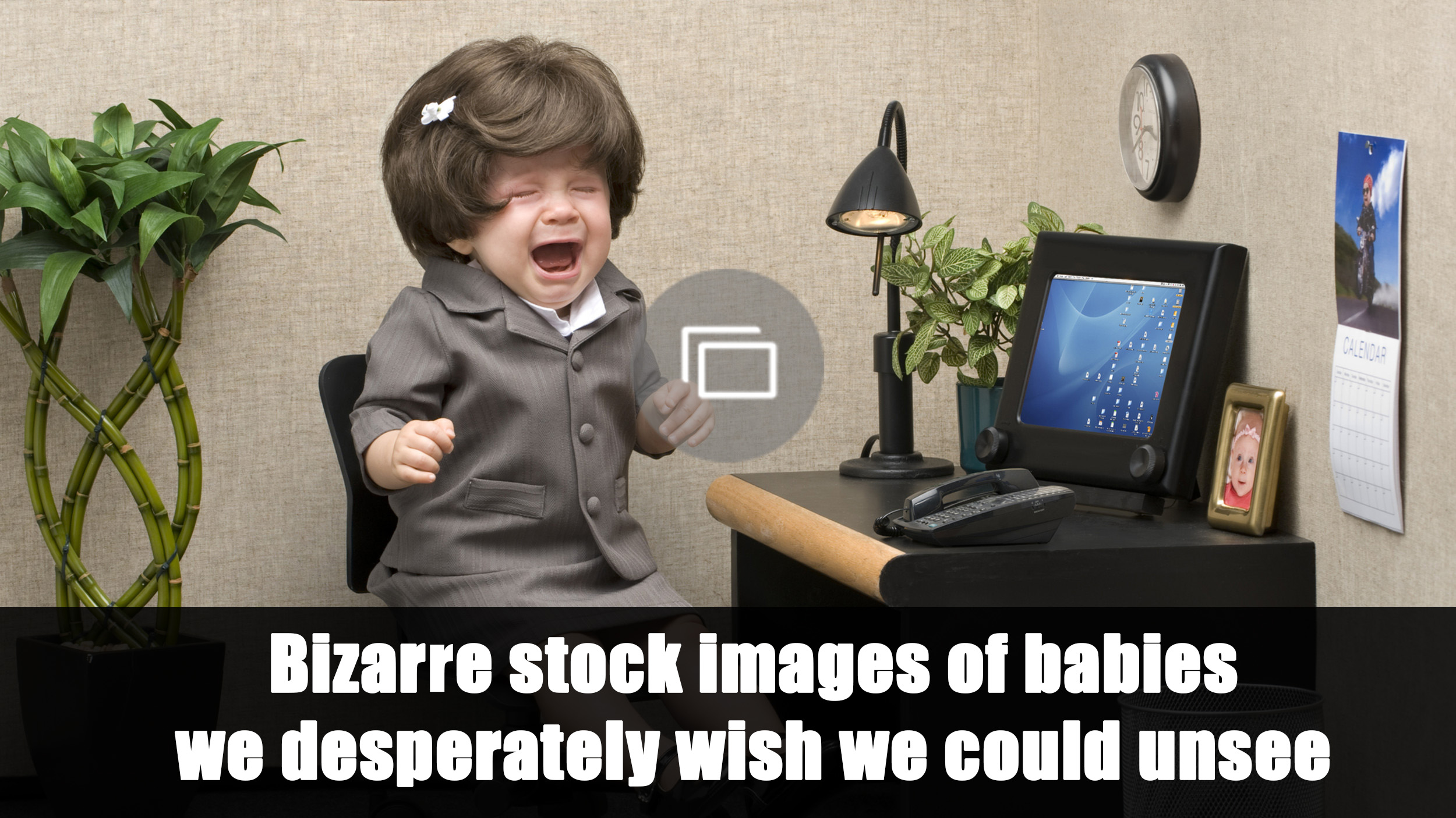 bizarre stock photos