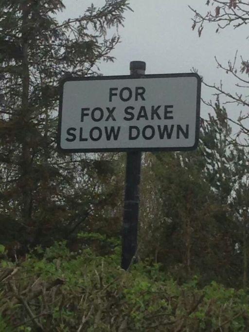 funny-road-signs-fox-sake