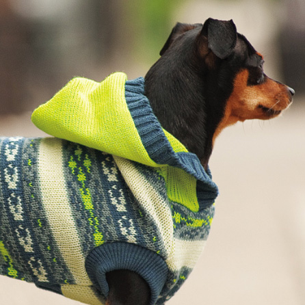 hooded Fair Isle sweater for large dogs