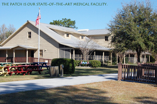 Camp Boggy Creek - Camp for Kids with Special Needs
