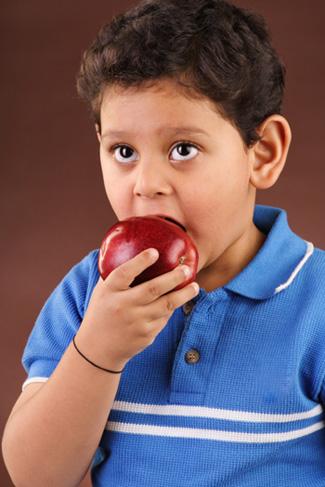 Boy Eating Apple on Roadtrip