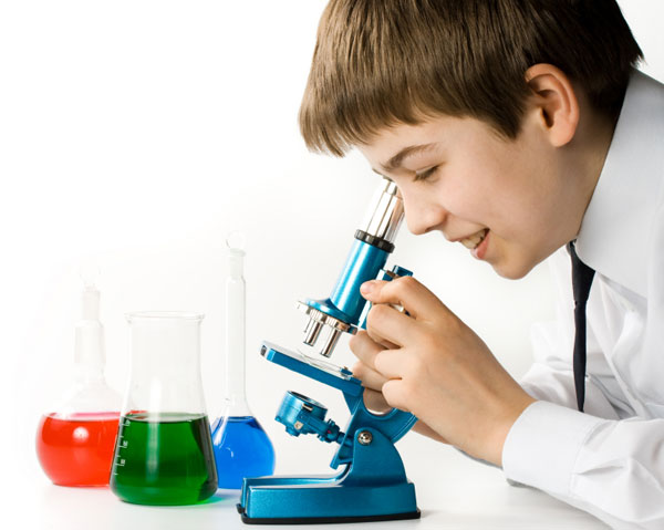 science experiments things scientist boy sheknows