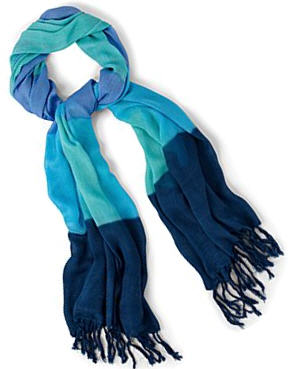 JC Penny's Ombre Scarf