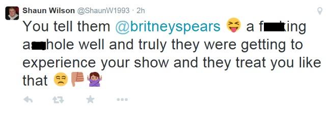 Britney Spears fan