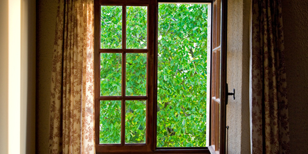 Green View through Window