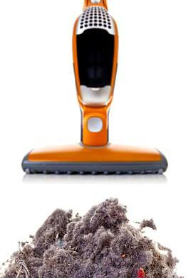 What's living inside your vacuum cleaner?