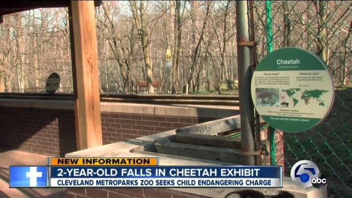 Witnesses say mom dangled toddler over