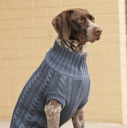 cable knit sweater for large dogs